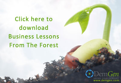 Business-Lessons-from-the-Forest-Download