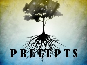 business precepts for entrepreneurs