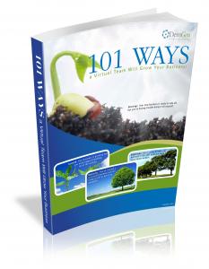 demgen 101 ways a virtual team will grow your business