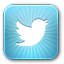 twitter profile management