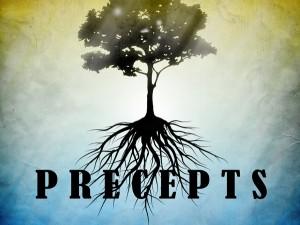 business precepts for entrepreneurs